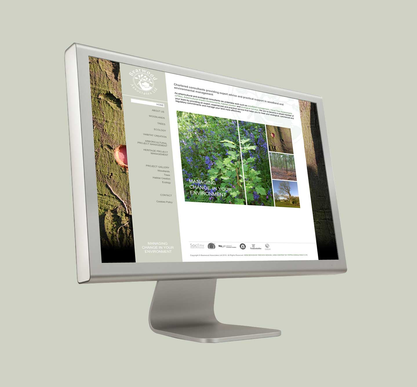 Bearwood Associates Website Development