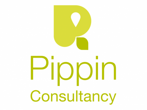 Pippin Consultancy Branding